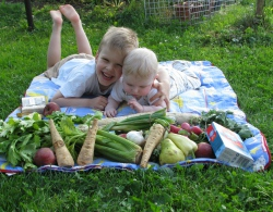 piknik se zdravíčkem.jpg